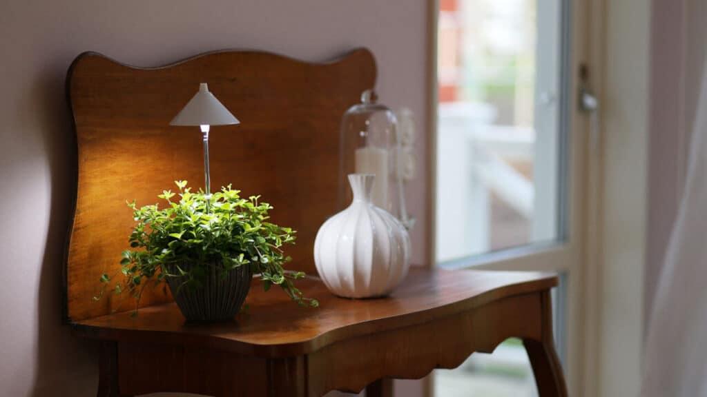 led lys til plante