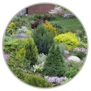 hjælp til haven